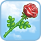 Rose d'Aphrodite