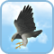 Cri du condor
