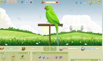Birdrama - Votre nouveau oiseau