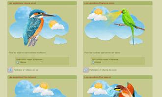 Birdrama - Les expositions ornithologiques